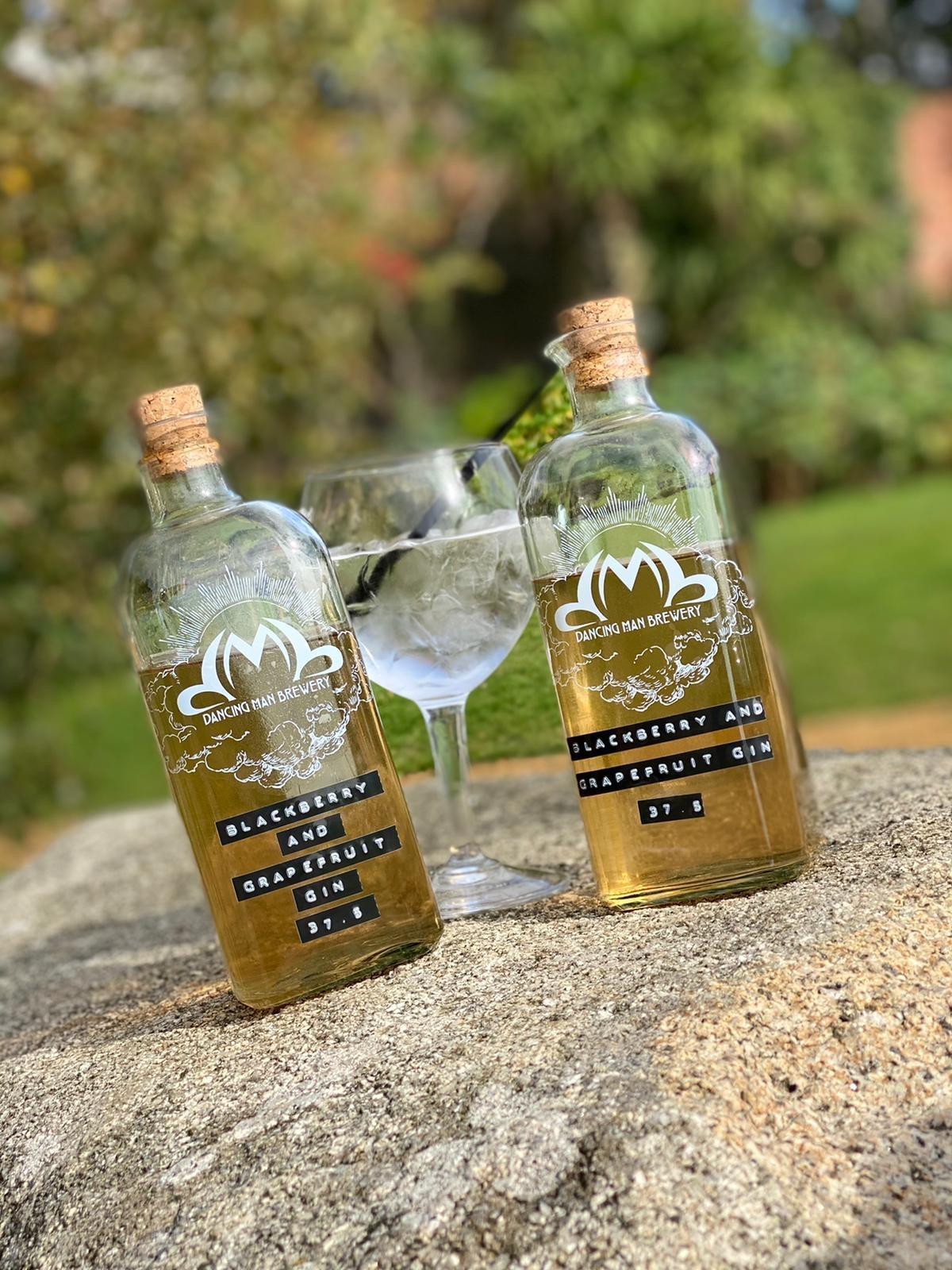 gin news blog